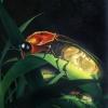 Firefly Nursery 72